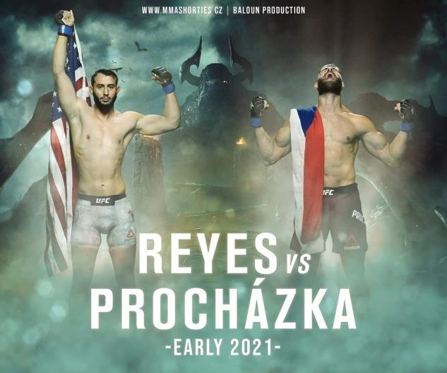 Reyes vs. Procházka / zdroj foto: MMAshorties