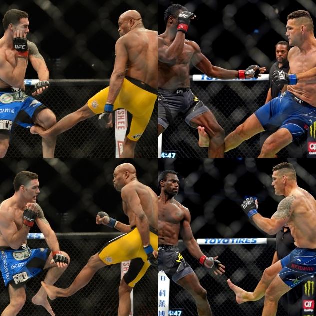 Deja vu pro Weidmana / zdroj foto: UFC